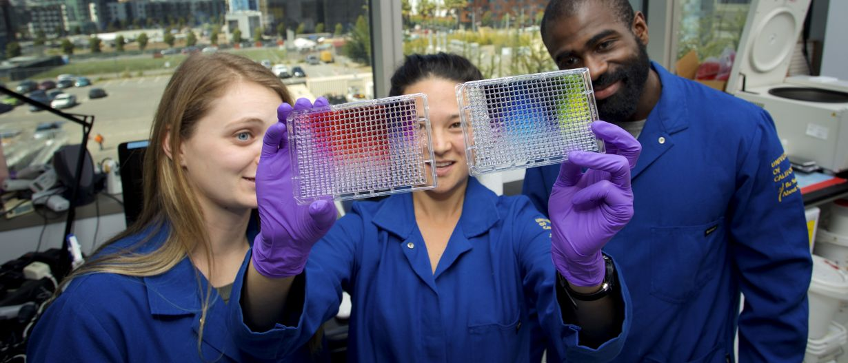 Lab scientists inspect colorful research materials with gloved hands.